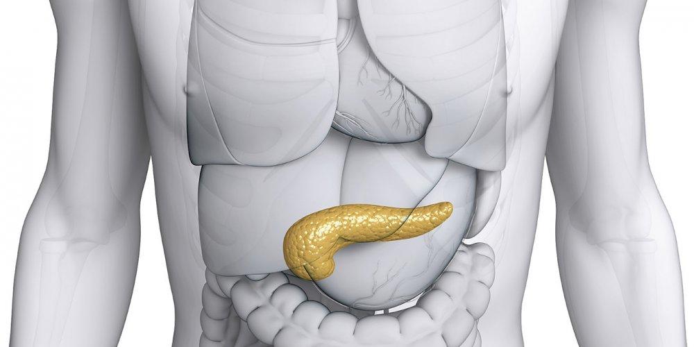 Pankreatit Nedir